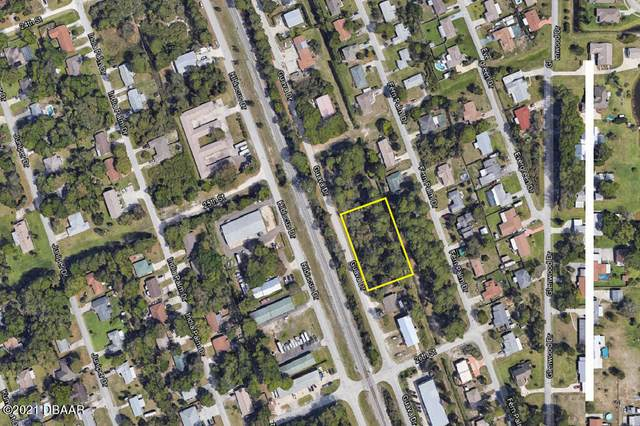2550 Guava Drive, Edgewater, FL 32141 (MLS #1081999) :: NextHome At The Beach