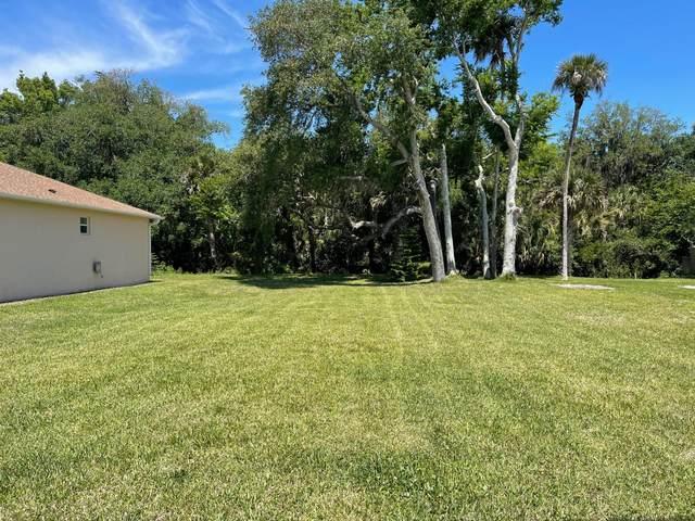 169 Coleman Street, Edgewater, FL 32141 (MLS #1083311) :: Momentum Realty