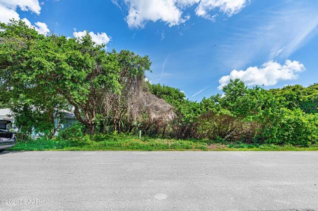 74 Aurora Avenue, Ponce Inlet, FL 32127 (MLS #1083722) :: NextHome At The Beach