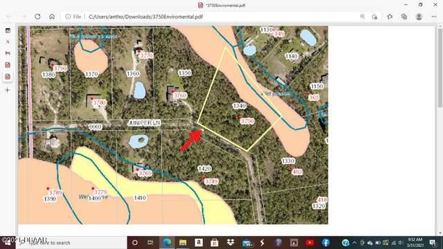3750 Juniper Lane, Ormond Beach, FL 32174 (MLS #1084707) :: Momentum Realty