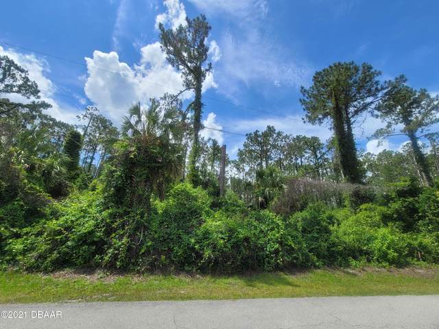 33 Seagoing Trail, Palm Coast, FL 32164 (MLS #1084813) :: Cook Group Luxury Real Estate