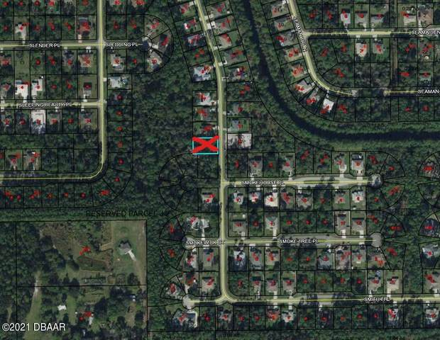 24 Smith Trail, Palm Coast, FL 32164 (MLS #1085432) :: Momentum Realty