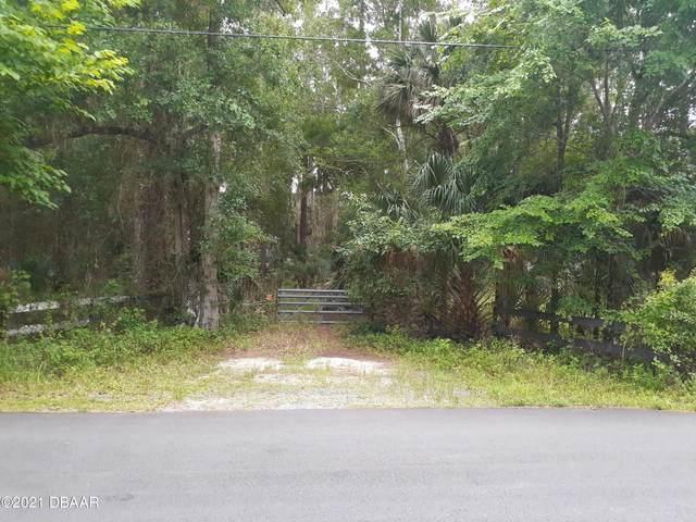 2089 Avocado Drive, Port Orange, FL 32128 (MLS #1085452) :: Momentum Realty