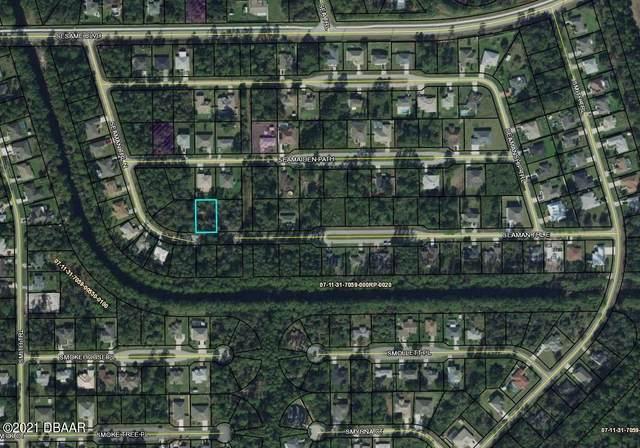 36 E Seaman Trail, Palm Coast, FL 32164 (MLS #1085801) :: Momentum Realty