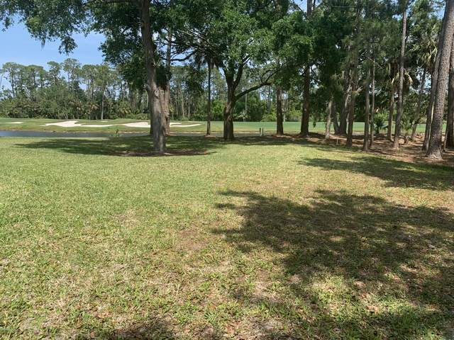 425 Long Cove Road, Ormond Beach, FL 32174 (MLS #1086008) :: Memory Hopkins Real Estate