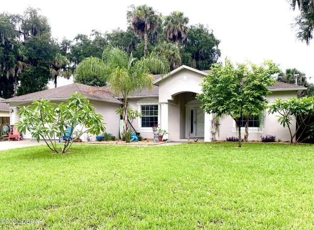 3121 Needle Palm Drive, Edgewater, FL 32141 (MLS #1086051) :: Cook Group Luxury Real Estate