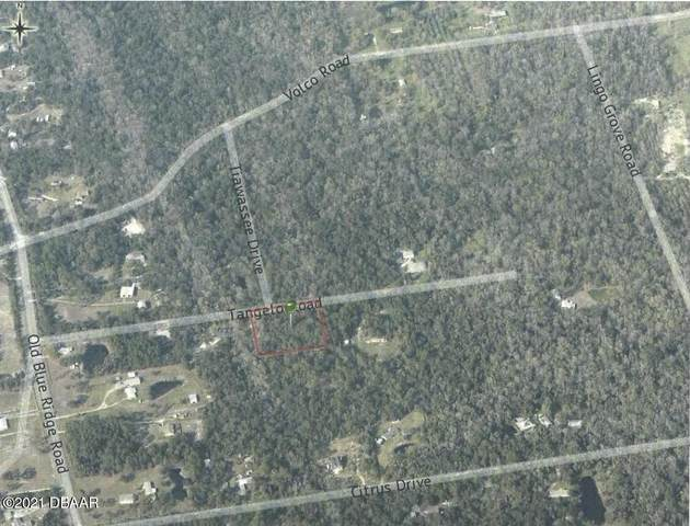 Lot 164 & Tangelo Road, Edgewater, FL 32141 (MLS #1086217) :: Cook Group Luxury Real Estate