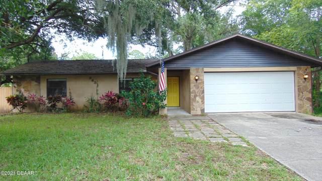 3431 Kumquat Drive, Edgewater, FL 32141 (MLS #1086433) :: Cook Group Luxury Real Estate