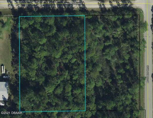 6017 Nutwood Avenue, Bunnell, FL 32110 (MLS #1086748) :: Cook Group Luxury Real Estate