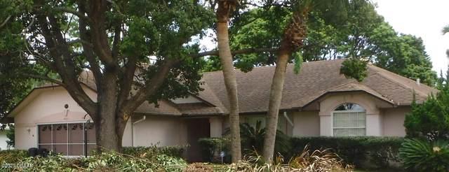 4585 Alder Drive, Port Orange, FL 32127 (MLS #1086942) :: Cook Group Luxury Real Estate