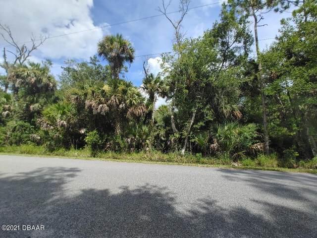 2421 Guava Drive, Port Orange, FL 32128 (MLS #1087319) :: Momentum Realty