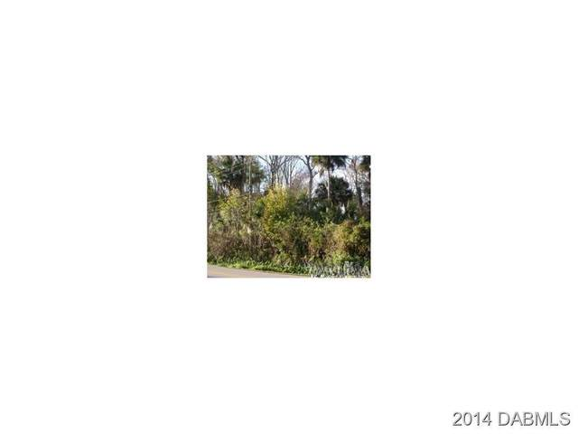1100 15th Street, Holly Hill, FL 32117 (MLS #1087509) :: Momentum Realty