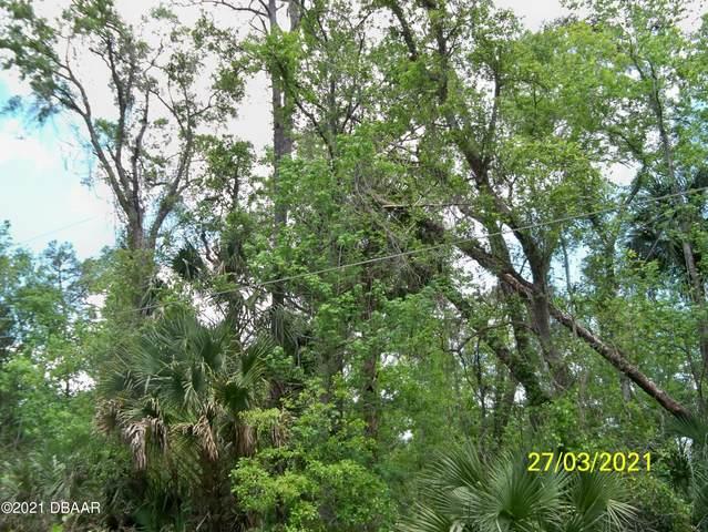 56044 Blue Creek Road, Astor, FL 32102 (MLS #1088429) :: Momentum Realty