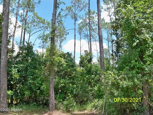 11 Kalendar Court, Palm Coast, FL 32164 (MLS #1088551) :: Momentum Realty
