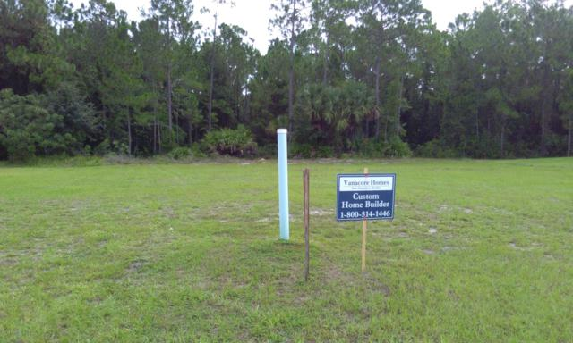 45 Chrysanthemum Drive, Ormond Beach, FL 32174 (MLS #1021035) :: Memory Hopkins Real Estate