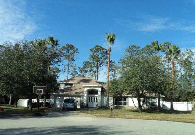 43 Peruvian Lane, Ormond Beach, FL 32174 (MLS #1038518) :: Beechler Realty Group