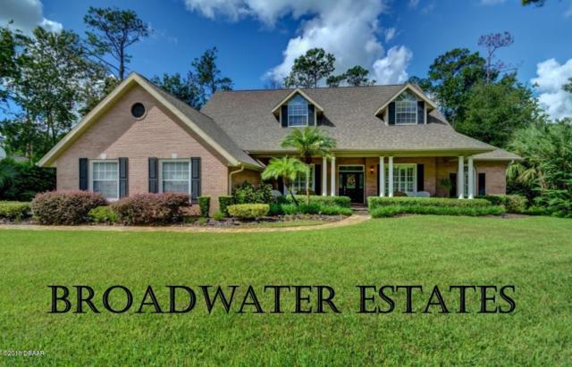 12 Broadwater Drive, Ormond Beach, FL 32174 (MLS #1047971) :: Beechler Realty Group