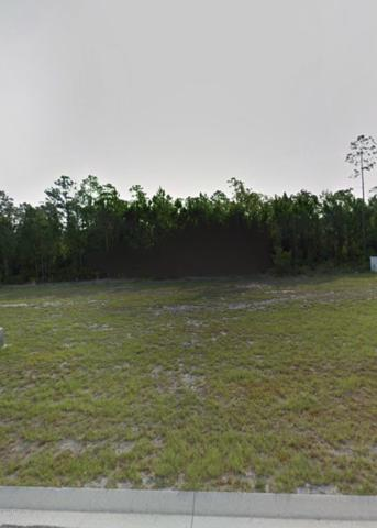 45 Chrysanthemum Drive, Ormond Beach, FL 32174 (MLS #1051678) :: Memory Hopkins Real Estate