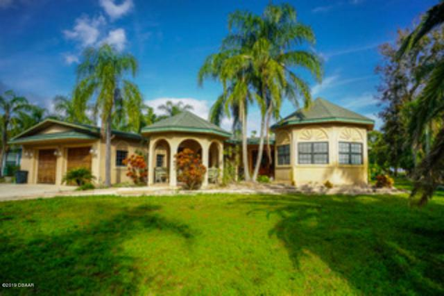 3 Cedar Street, Port Orange, FL 32127 (MLS #1052499) :: Memory Hopkins Real Estate