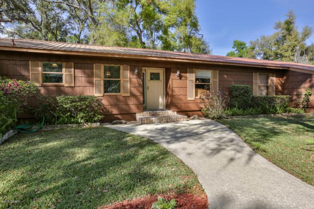 711 Freda Lane, Port Orange, FL 32127 (MLS #1054896) :: Cook Group Luxury Real Estate
