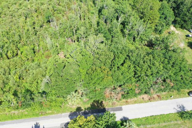 0 Watts Dairy Road, Haines City, FL 33844 (MLS #1058784) :: Memory Hopkins Real Estate
