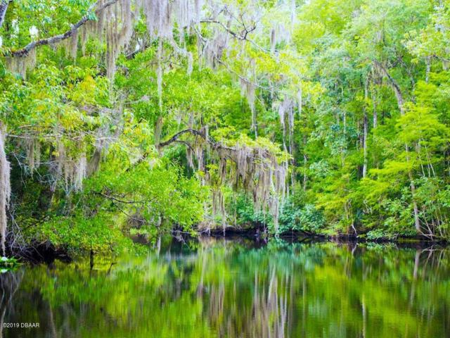 900 Arroyo Parkway, Ormond Beach, FL 32174 (MLS #1059489) :: Memory Hopkins Real Estate