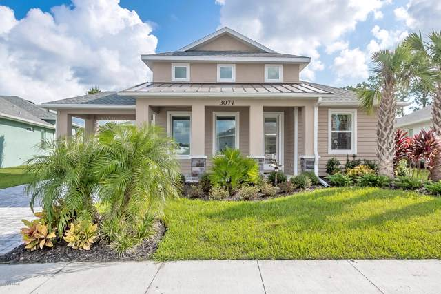 3077 Borassus Drive, New Smyrna Beach, FL 32168 (MLS #1062030) :: Florida Life Real Estate Group