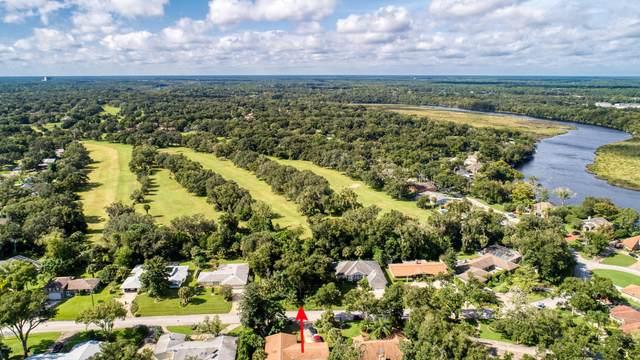 74 N St Andrews Drive, Ormond Beach, FL 32174 (MLS #1075700) :: Memory Hopkins Real Estate