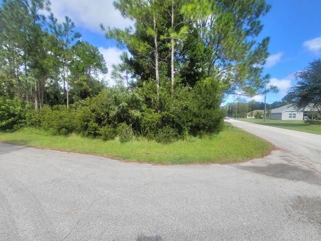 29 Sea Spiral Path, Palm Coast, FL 32164 (MLS #1076380) :: Florida Life Real Estate Group