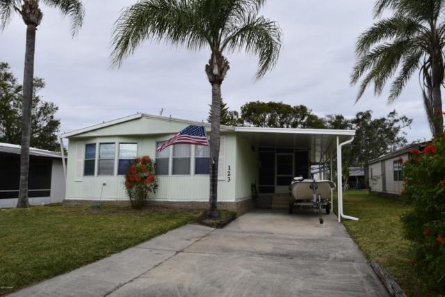 123 Ash Street, Edgewater, FL 32141 (MLS #1039142) :: Beechler Realty Group
