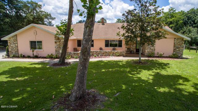 1999 N Spruce Creek Circle, Port Orange, FL 32128 (MLS #1041086) :: Beechler Realty Group