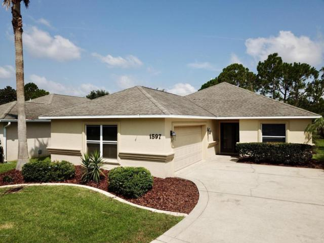 1597 Town Park Drive, Port Orange, FL 32129 (MLS #1044031) :: Beechler Realty Group