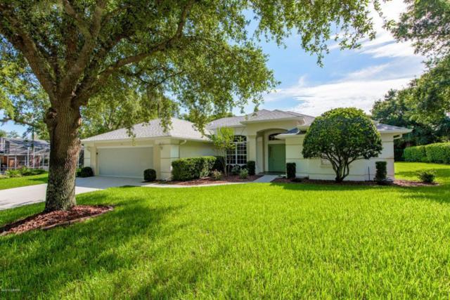 17 Cliffside Drive, Ormond Beach, FL 32174 (MLS #1044770) :: Beechler Realty Group