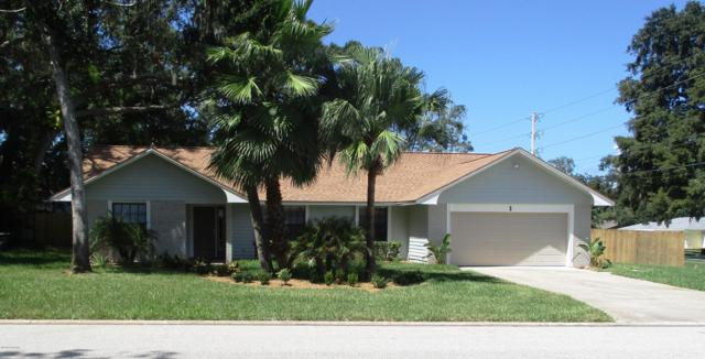 1 Larisa Terrace, Ormond Beach, FL 32174 (MLS #1047824) :: Beechler Realty Group