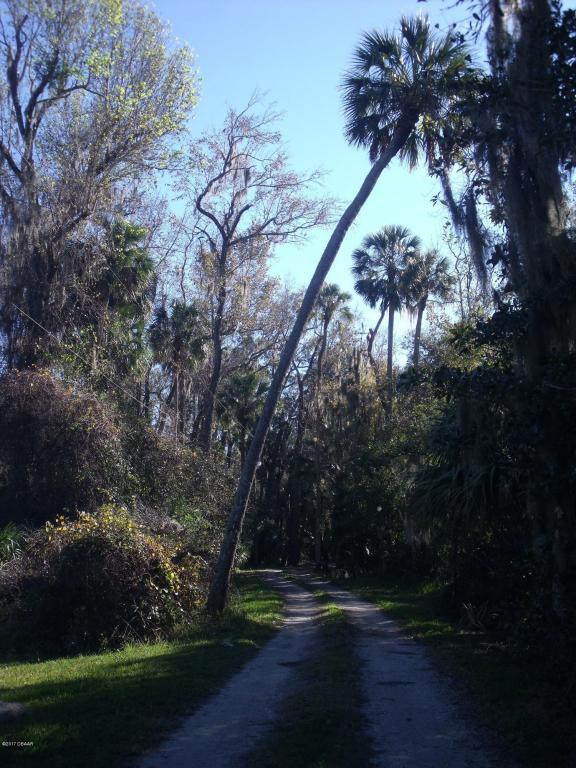 125 Branham Lane, Deltona, FL 32738 (MLS #1028534) :: Florida Life Real Estate Group