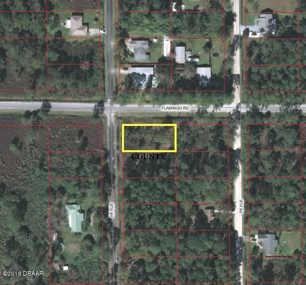 1895 8th Avenue, Deland, FL 32724 (MLS #1038471) :: Memory Hopkins Real Estate