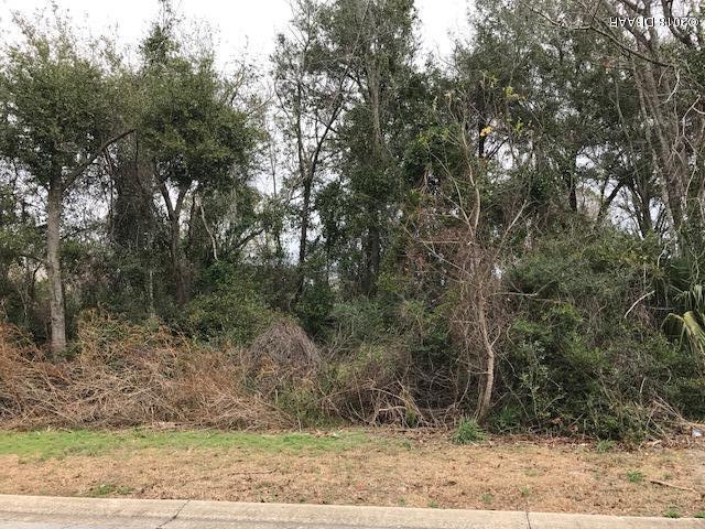 1355 Cedar Bluff, Daytona Beach, FL 32117 (MLS #1038841) :: Beechler Realty Group