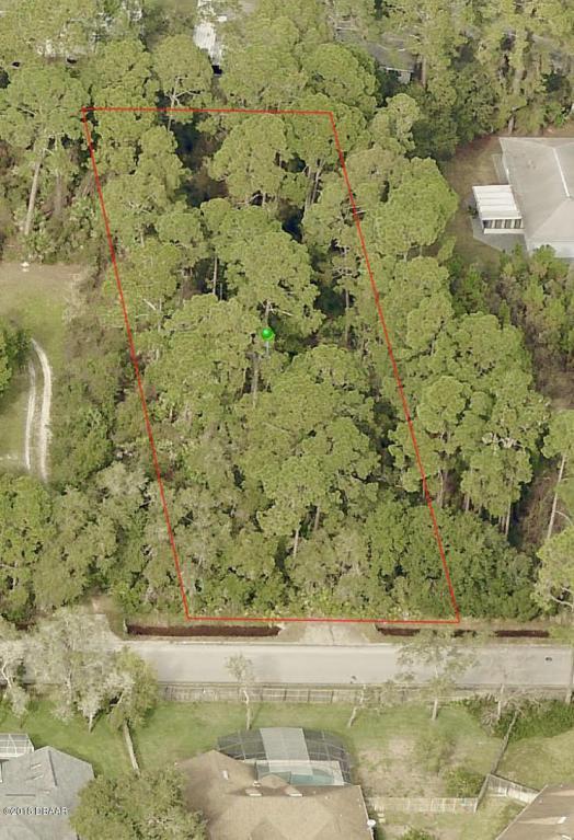 520 Renner Road, Port Orange, FL 32127 (MLS #1041909) :: Cook Group Luxury Real Estate