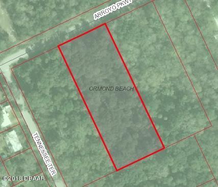 970 Arroyo Parkway, Ormond Beach, FL 32174 (MLS #1043945) :: Memory Hopkins Real Estate