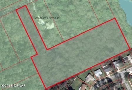 950 Arroyo Parkway, Ormond Beach, FL 32174 (MLS #1044217) :: Memory Hopkins Real Estate