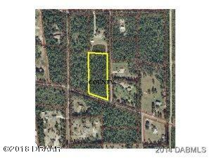 339 Sitka Court, Ormond Beach, FL 32174 (MLS #1044869) :: Beechler Realty Group
