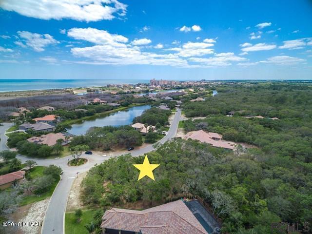 5 Spanish Moss Court, Palm Coast, FL 32137 (MLS #1045414) :: Memory Hopkins Real Estate