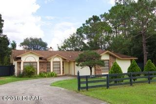 2967 Lake Helen Osteen Road, Deltona, FL 32738 (MLS #1047962) :: Memory Hopkins Real Estate