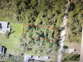 1544 10th Avenue, Deland, FL 32724 (MLS #1049319) :: Memory Hopkins Real Estate