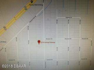 2274 Central Parkway, Deland, FL 32724 (MLS #1049328) :: Memory Hopkins Real Estate