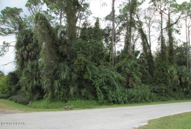 0 Vista Palm Drive, Edgewater, FL 32141 (MLS #1049757) :: Beechler Realty Group
