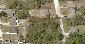0 Walnut Avenue, Orange City, FL 32763 (MLS #1050500) :: Memory Hopkins Real Estate