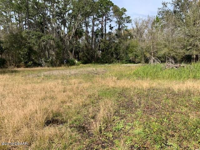2085 Old Daytona Road, Port Orange, FL 32128 (MLS #1054009) :: Memory Hopkins Real Estate