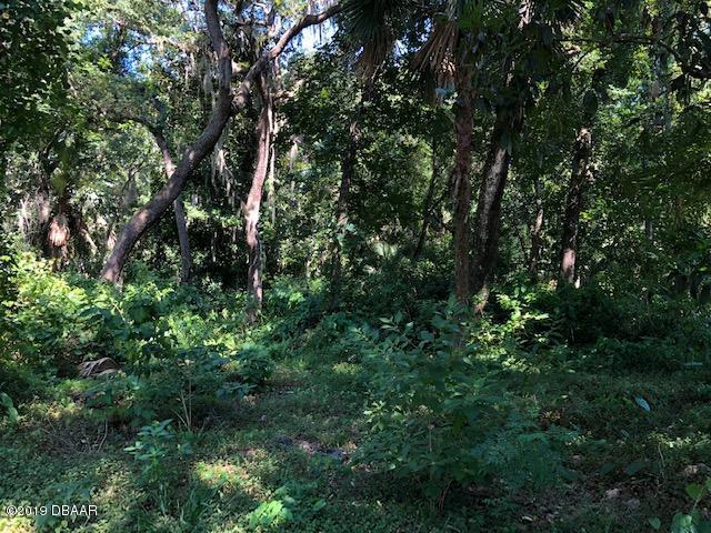 20 Lost Creek Lane, Ormond Beach, FL 32174 (MLS #1059409) :: NextHome At The Beach