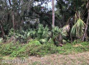 0 Willard Street, New Smyrna Beach, FL 32168 (MLS #1059850) :: Cook Group Luxury Real Estate